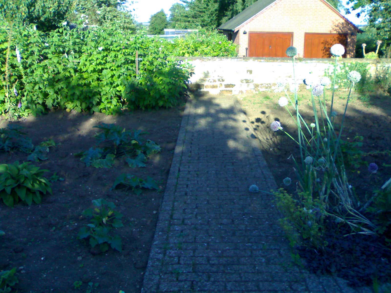 oxford old garden